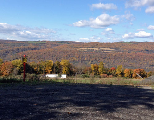 Fall foliage on US 11 in NY