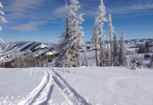 Top reasons to ski at Powder Mountain, Utah.