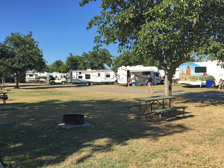 Tent and RV site at the KOA in Visalia, CA.